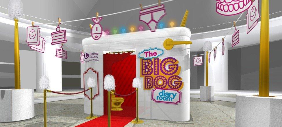 Big Bog Diary Room